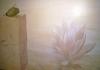 agave2.jpg